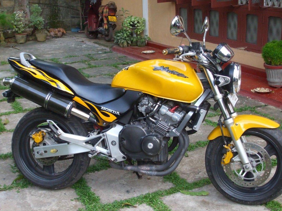 Hornet 250, 2005